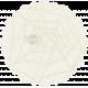 Halloween 2016: Spider Doily