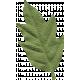 Yesteryear Leaf5