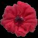 Picnic Day Flower 175