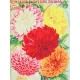 Seriously Floral Pocket Card 23 3x4