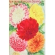 Seriously Floral Pocket Card 23 4x6