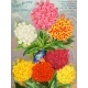 Seriously Floral Pocket Card 15 3x4