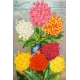 Seriously Floral Pocket Card 15 4x6