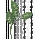 Back To Nature Leaf 057