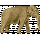 Kenya Elements elephant