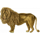 Kenya Elements Lion