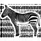 Kenya Elements sticker zebra