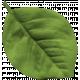 Granny Punk Elements- Leaf