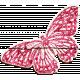 Desert Spring Elements: Butterfly
