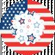 Americana Elements- Print Flower 3