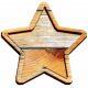 The Good Life- August 2019 Elements- Wood Star 2