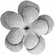 The Good Life: March 2020 Elements Kit- flower 3 white