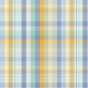 The Good Life- July 2020 Plaid & Solid Papers- Plaid Paper 2