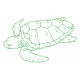 The Good Life- July 2020 Tags & Stickers- Print Sticker Turtle