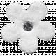 Good Life April 21_Flower-white