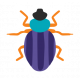 Good Life June 21_Bug 3-sticker
