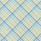 Fisher Paper 056 Plaid