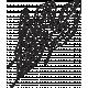 Leaf Stamp Set 001s