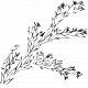 Leaf Stamp Set 001ll