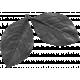 Leaf 043 Template