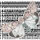 Sugar Sweet Butterfly