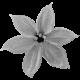 Flowers #01 - Templates - Flower #2