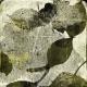 Secret Garden- Artsy Papers- Artsy 01