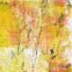 Secret Garden- Artsy Papers- Artsy 03