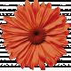 Pumpkin Spice- Minikit- Flower Big