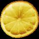 Enjoy Each Moment- Mini Kit- Lemon