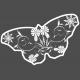 Butterflies- Butterfly 02- Filigrain