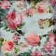 Marie Mini Kit- Colourful Roses Paper