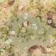 Jane- Flowers On Green Linen Paper