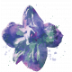 England - Flower Stamps - Larkspur