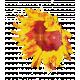 England - Flower Stamps - Sunflower