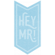XY- Elements- Word Art- Hey Mr!