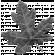 Leaves- Templates- Leaf 8