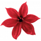 Christmas Day - Elements - Flower 01 - Red