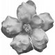 Flowers No.8 Templates - Flower Template 6