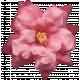 Flowers No.8- Flower 1