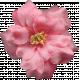 Flowers No.8- Flower 2