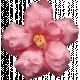 Flowers No.8- Flower 6