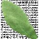 Picnic Day Elements - Leaf 2