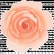 Flowers No.15 – Flower 1