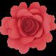 Flowers No.15 – Flower 4
