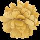 Flowers No.15 – Flower 5