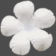 Flowers No.17 – Flower 12