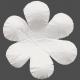 Flowers No.17 – Flower 14