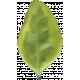 Leaves No.3 – Leaf 10