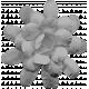 Flowers No.18 – Flower Template 6